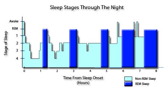 fazy spanku